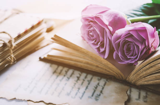 Rose flower with love letters with vintage tone stock photo