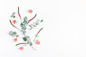 istock Rose flowers and eucalyptus branches. Flat lay, top view 821746170