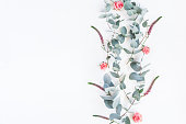 istock Rose flowers and eucalyptus branches. Flat lay, top view 821746362