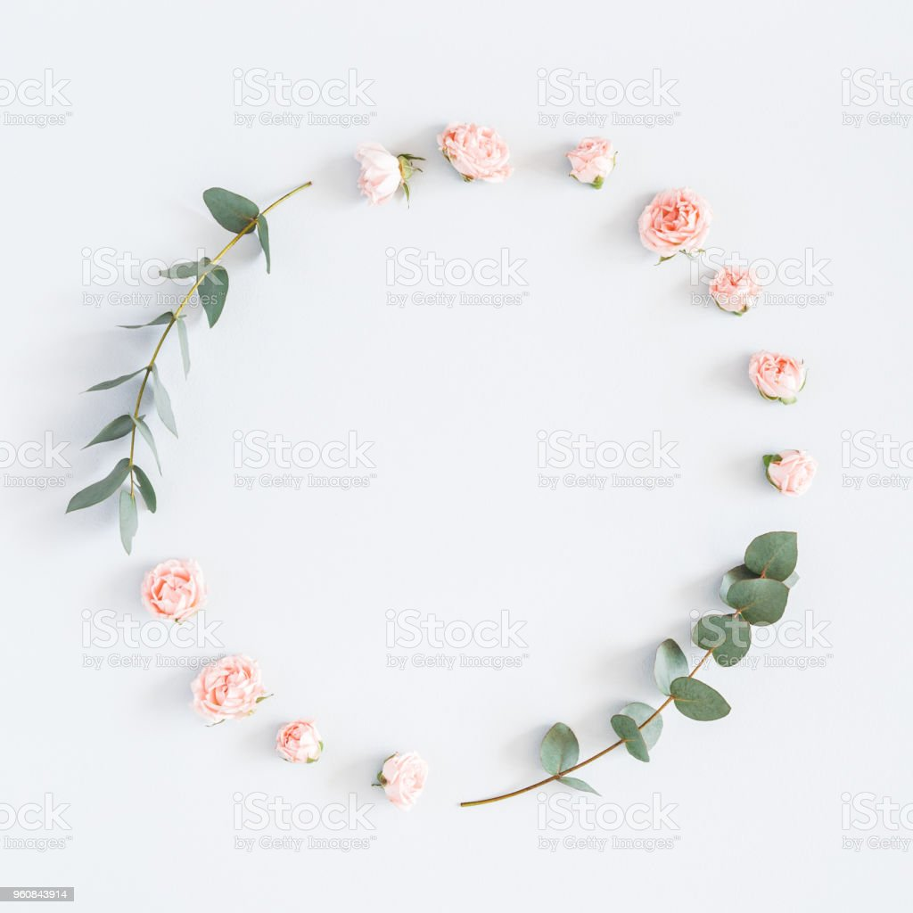 Rose flowers, eucalyptus branches. Flat lay, top view, copy space stock photo