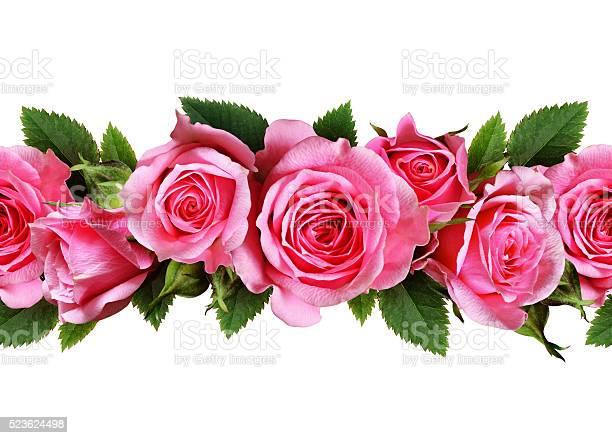 Rose flowers line picture id523624498?b=1&k=6&m=523624498&s=612x612&h=oildsmbtw4odw5dzmqdsxpwwbmuqszbqd7nde jf8cm=