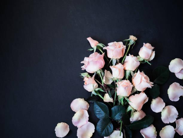 Rose Blumen auf schwarzem Hintergrund. Rosa Rosen Top View Flach liegen, Kopie Space – Foto