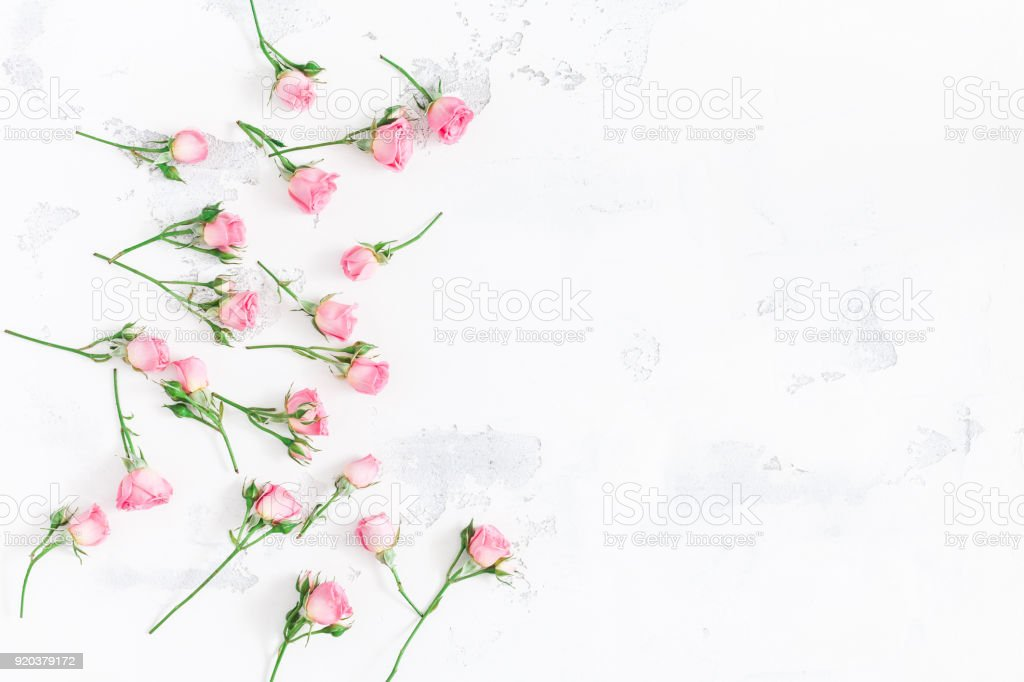 Flowers composition. Frame made of pink rose flowers on white wooden...