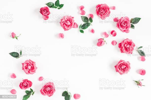 Rose flowers on white background flat lay top view picture id925243820?b=1&k=6&m=925243820&s=612x612&h=h77663ls0zhu9vgbxysrkhr g4mkeuzghdjmy fpjke=