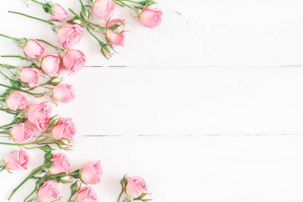 rose flowers on white wooden background. flat lay, top view - mothers day stock pictures, royalty-free photos & images