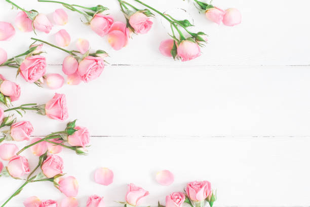Rose flowers on white wooden background flat lay top view picture id926978934?b=1&k=6&m=926978934&s=612x612&w=0&h=pc2ljiblhxl3dvqohenkc tdkssax81xmyss usgn8m=