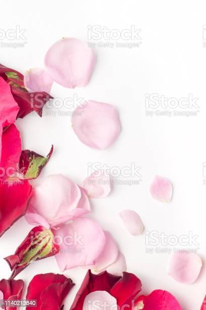 Rose flowers petals on white background valentines day background picture id1140213840?b=1&k=6&m=1140213840&s=612x612&h= m9fjdkm hevyjy7ohbc9bkvjrnf8q1wa3hwxt qhmy=