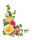 istock Rose flowers with eucalyptus leaves in a corner arrangement 926517748