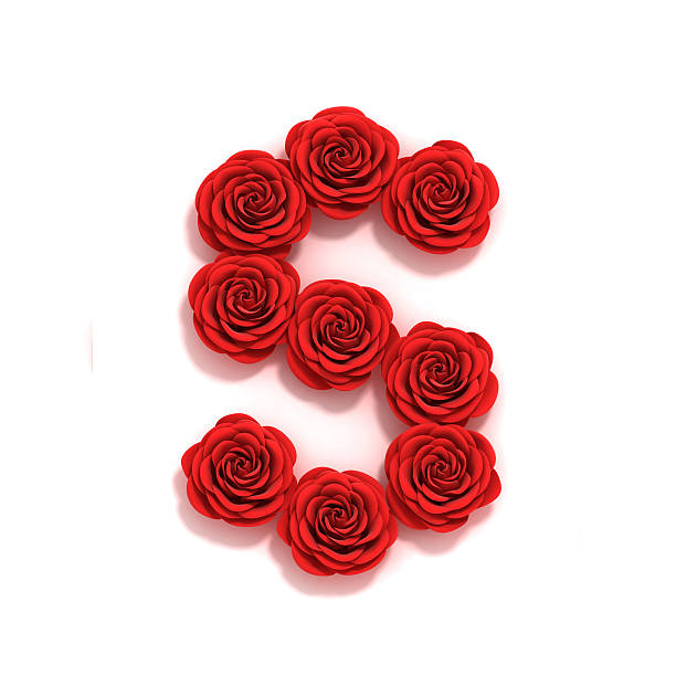 rose font letter S stock photo