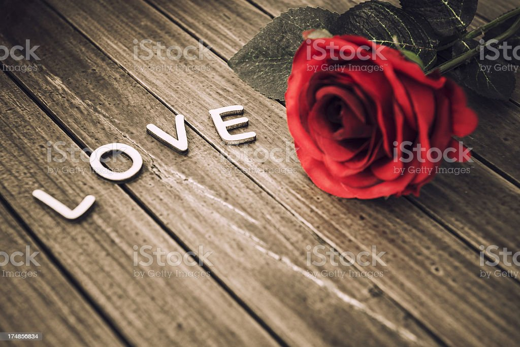 Rose for St. valentine royalty-free stock photo