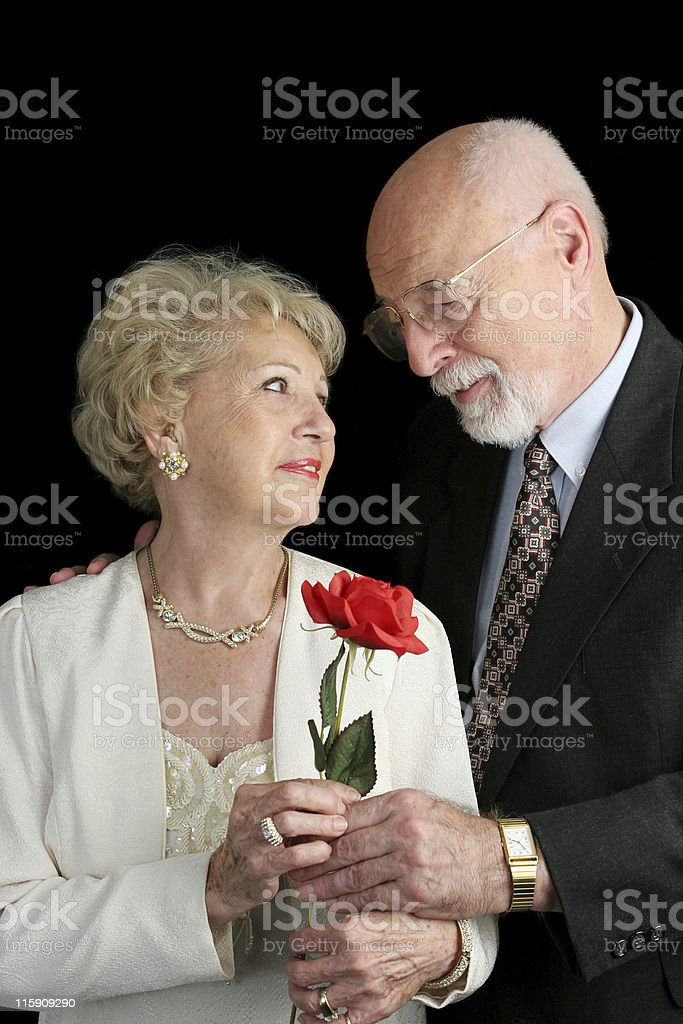 Rose For The Lady royalty-free stock photo