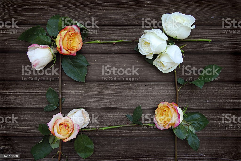 Rose Frame on old Barn wood stock photo