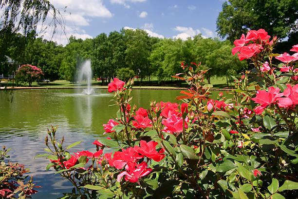 Rose Garden at the Lake