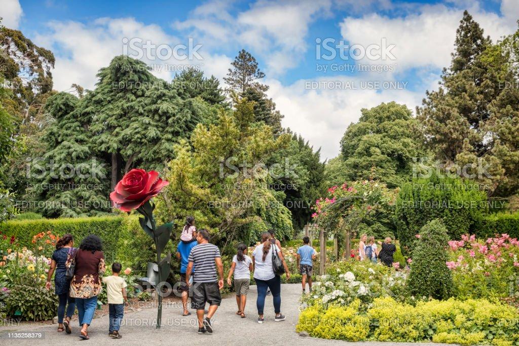 Rose Garden, Christchurch Botanic Gardens, Nieuw-Zeeland foto