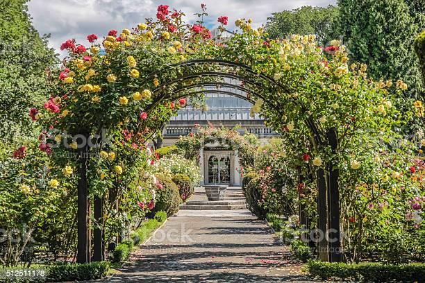 Foto De Rose Garden O Jardim Botanico E Mais Fotos De Stock De Arco Caracteristica Arquitetonica Istock
