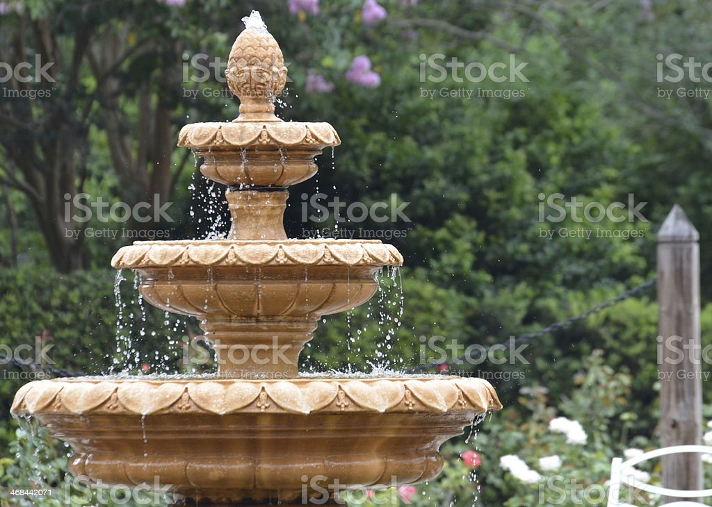 Rose Garden Water Fountain stock photo