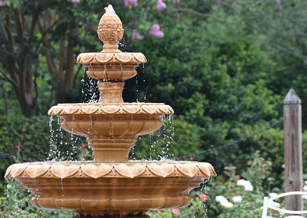 rose garden de l'eau de la fontaine - fontaine photos et images de collection