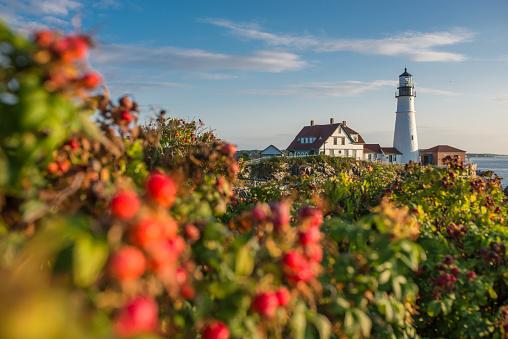 Lighthouse, Beach, Natural Landmark, Sea, Summer