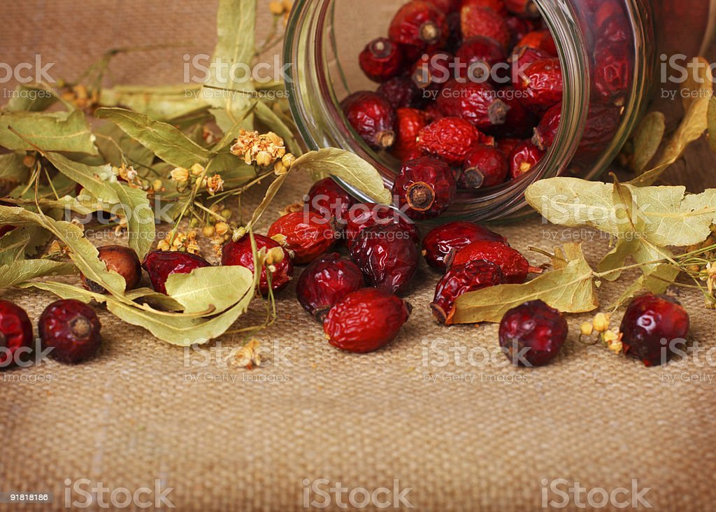 Rose hips and linden blossom royalty-free stock photo