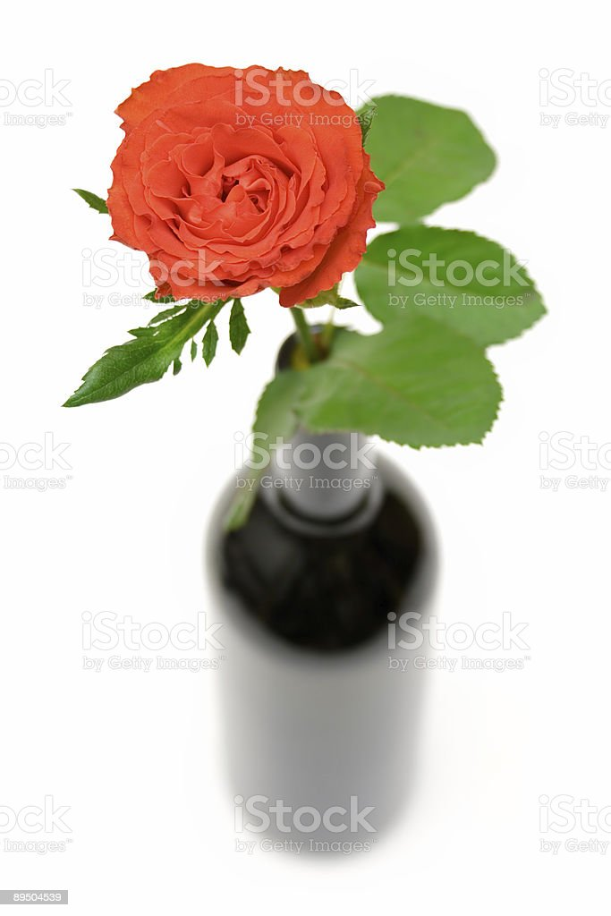 Rose in a Bottle royalty-free stock photo