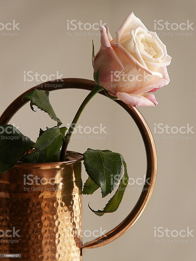 Rose in Copper Pot royalty-free stock photo