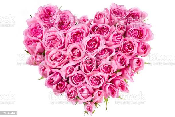 Rose in love shape picture id89142443?b=1&k=6&m=89142443&s=612x612&h=cxcqx jvqjqay idfvdaghqi0rmp2nmmpar5xzcl gq=