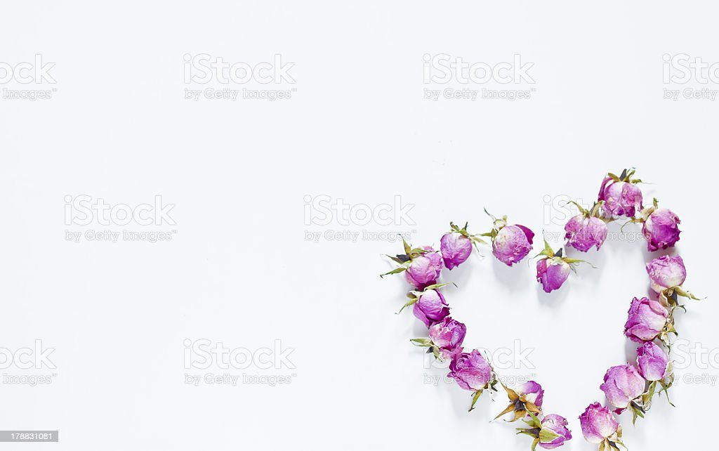 Rose in the heart royalty-free stock photo