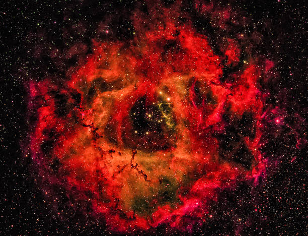 rose in the unicorn: the rosette nebula - dally stock pictures, royalty-free photos & images