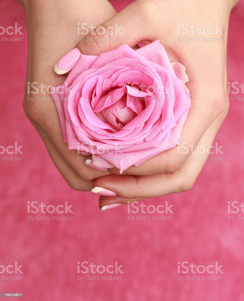 Ros'in women's hands – Foto