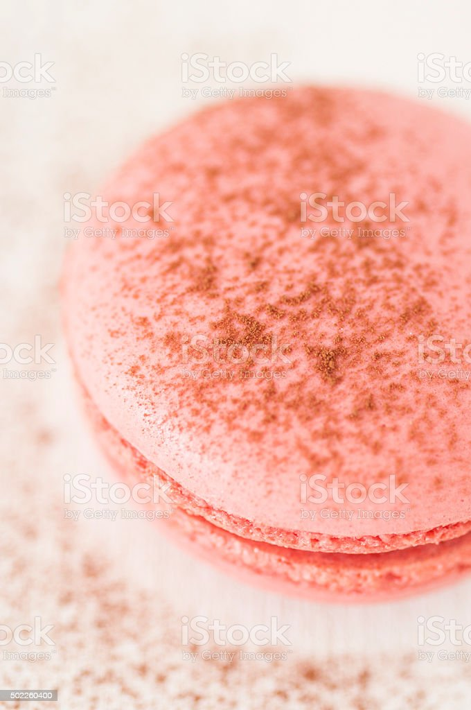 Rose Macaroons with Cacao stock photo