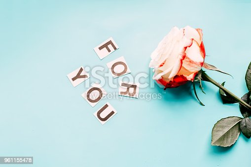 istock Rose on blue background for you 961155478