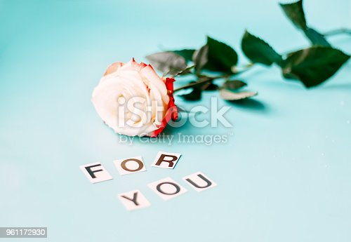 istock Rose on blue background for you 961172930