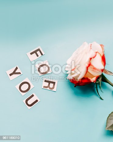 istock Rose on blue background for you 961189010