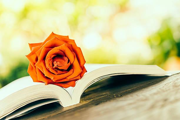 Rose on book picture id528373795?b=1&k=6&m=528373795&s=612x612&w=0&h=qmth iss4fs8x ki7fq1br7puxxdappiy7ydbja4ebk=