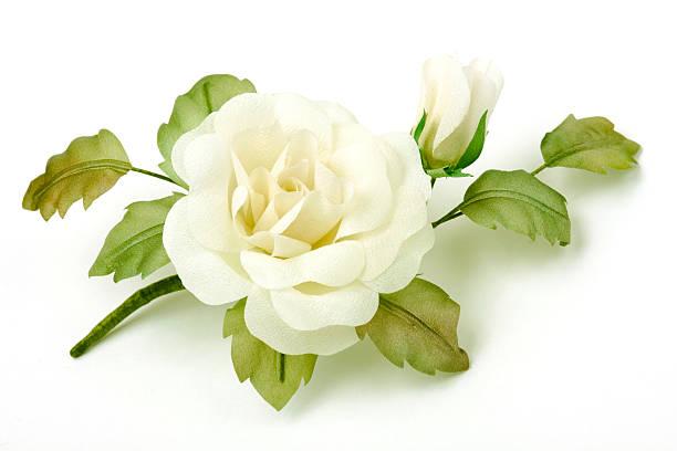 Rose on white background picture id117868587?b=1&k=6&m=117868587&s=612x612&w=0&h=jq4slo1moxn4rqymsphc yfsr88bowephwibp7tuaic=