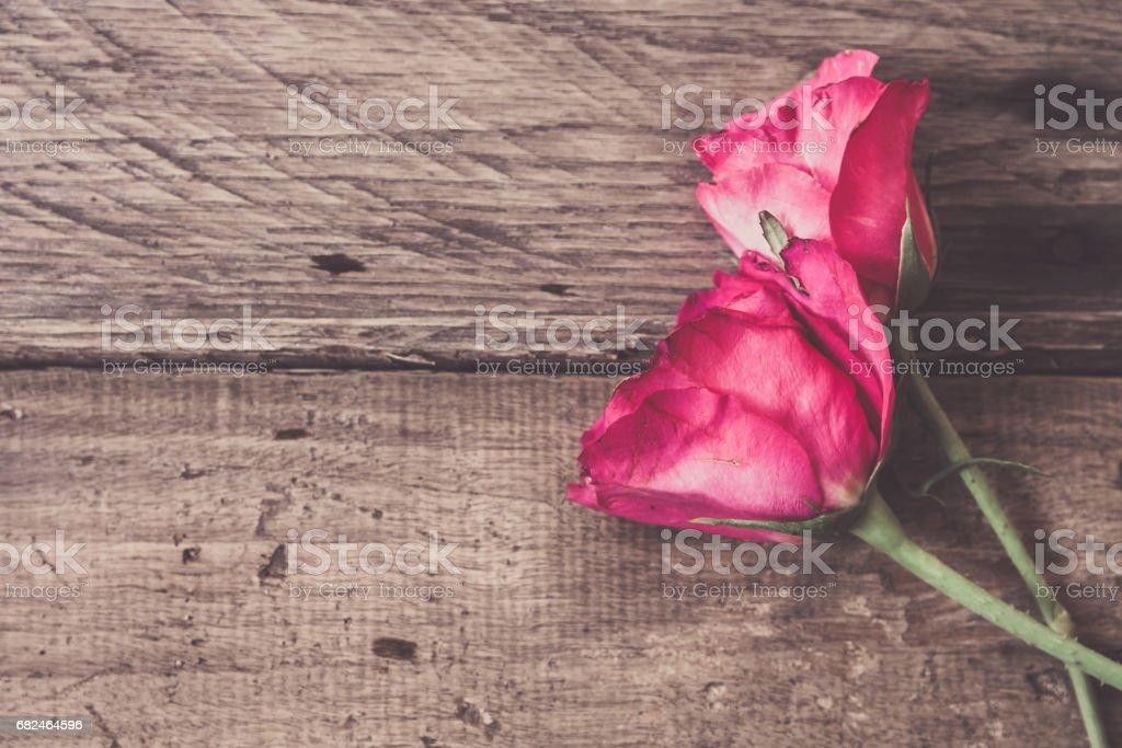 rose on wood background royalty-free stock photo