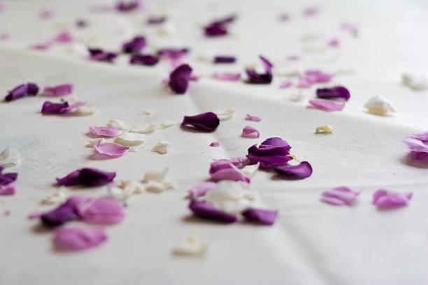 Rose petal confetti picture id172317200?b=1&k=6&m=172317200&s=612x612&w=0&h=i pupzk hfv nen b d qf6xkhfifi6mwsmxyraxm1o=