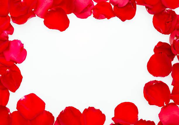 Rose petal frame picture id468991401?b=1&k=6&m=468991401&s=612x612&w=0&h=gwtfs pzowsswwcnngc keouumuc3 eefnvzozrajh4=