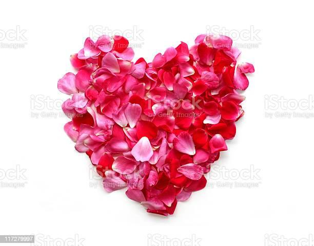 Rose petal heart picture id117279997?b=1&k=6&m=117279997&s=612x612&h=cnmmwkpaqtrndf3e2qdqw85kzh0zfuwaatriceg1yxc=