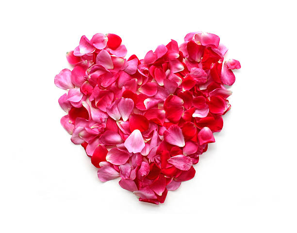 Rose petal heart picture id117279997?b=1&k=6&m=117279997&s=612x612&w=0&h=xjf lbdc8eejcmy23lrzhti2brsazcwq0afztlrldps=