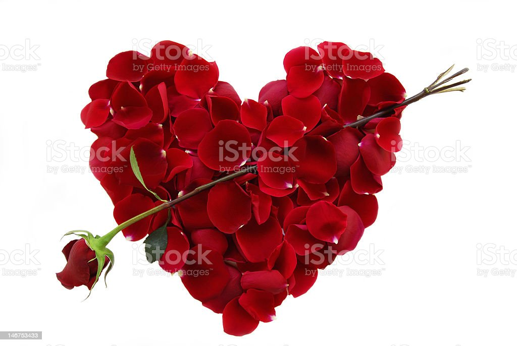 Rose petal heart with arrow stock photo