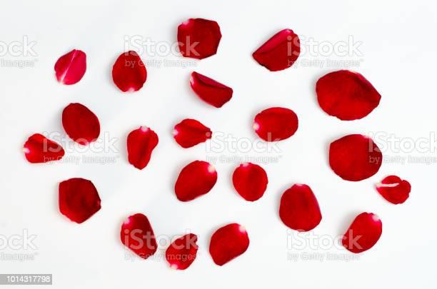 Rose petal isolate on a white background red design heart picture id1014317798?b=1&k=6&m=1014317798&s=612x612&h=b997ey2dyvmu3bs8e4 vrqsbvnxijskbkfjp1m3qjic=