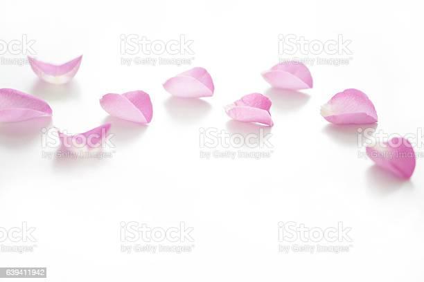 Rose petal on white background picture id639411942?b=1&k=6&m=639411942&s=612x612&h=cgvhuwjcfqlxhvvvq pzu6efzjlkhk wccljjangopc=