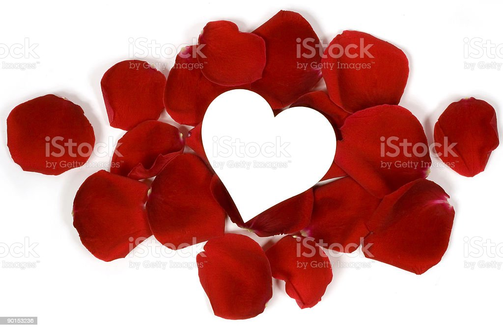 rose petals and heart royalty-free stock photo