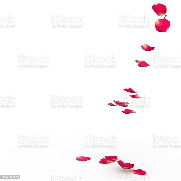 Rose petals fall to the floor picture id500780574?b=1&k=6&m=500780574&s=612x612&h=lj65ulipdw9uq0bhkrxeskz2m9eg3r9al aqhv5kwim=