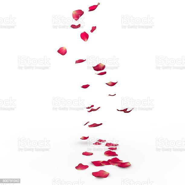 Rose petals fall to the floor picture id500781042?b=1&k=6&m=500781042&s=612x612&h=z0pyohm zfxfovpacuk1spqpeegyb5honmdzz6mikx8=