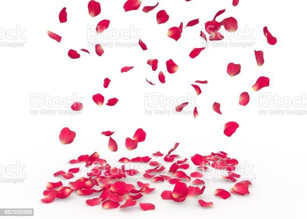 Rose petals fall to the floor picture id682935886?b=1&k=6&m=682935886&s=612x612&h=j hax8lawbce7eq4ssz1qxckbdqtxz4ybbqe iv9wwy=