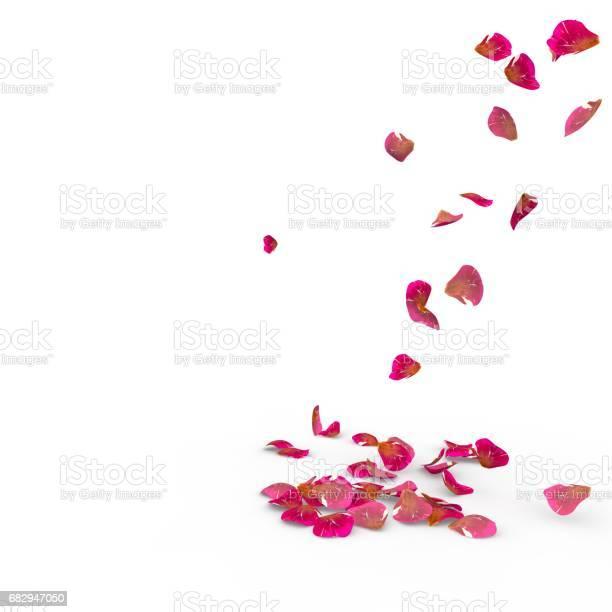 Rose petals fall to the floor picture id682947050?b=1&k=6&m=682947050&s=612x612&h=cs60xlboarrero i6ujfbsibvos79a6u3rwp5qtq3 q=