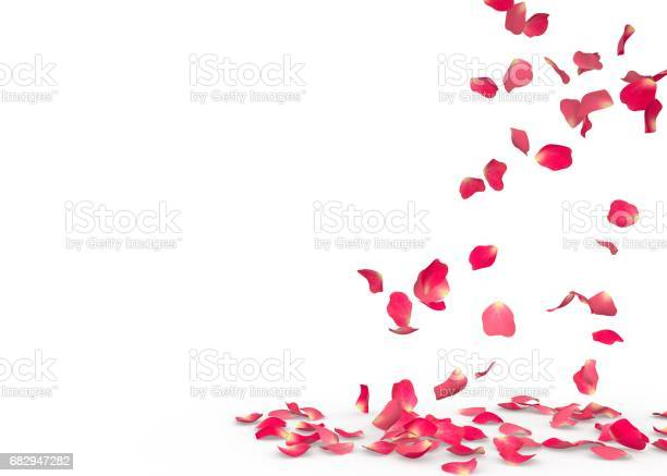 Rose petals fall to the floor picture id682947282?b=1&k=6&m=682947282&s=612x612&h=lgr3 csqxizdeprorbknbapyranhpjua0l0w rxfaxg=