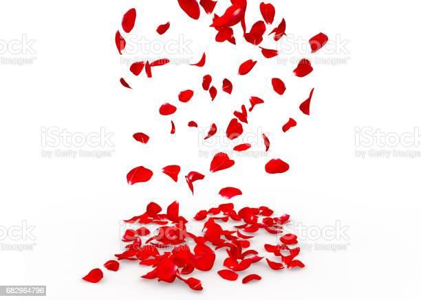 Rose petals fall to the floor picture id682964796?b=1&k=6&m=682964796&s=612x612&h=qzp8vzsw5pnxivoaejjc5qflsf6oai5sawtnpsrfgxm=